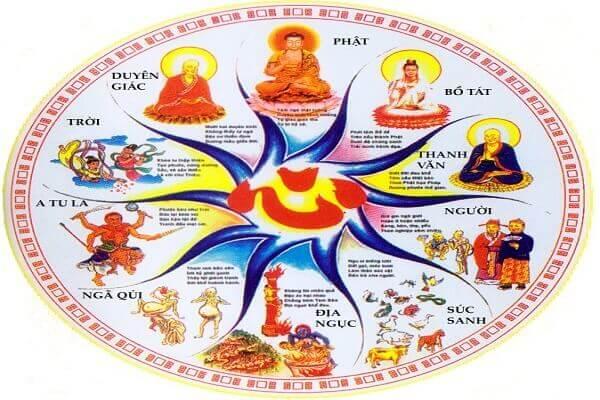 Người Chết Có Thể đầu Thai Thành Nhiều Hình Dạng